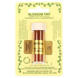 View the SKINTONE / FLESH Blossom Tint icing dusting colour 7ml online at Cake Stuff