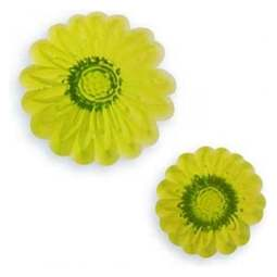 View the Daisy Chain flower 2 pc fondant icing cutter set online at Cake Stuff