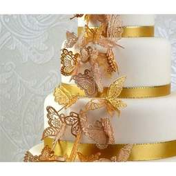 View the BEAUTIFUL BUTTERFLIES cake / edible lace silicone tool mat online at Cake Stuff