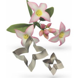 View the metal DAPHNE 2 piece icing flower cutter set online at Cake Stuff