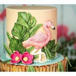 View the Tropical Birds silicone icing mould set online at Cake Stuff