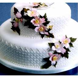 View the CLEMATIS 8 pc icing sugarcraft flower cutter set online at Cake Stuff