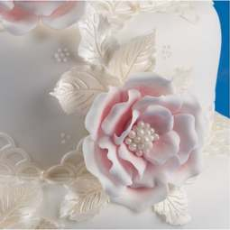 View the BRIAR ROSE 10 pc icing sugarcraft flower cutter set online at Cake Stuff