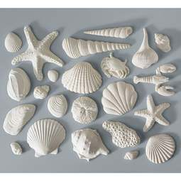 View the set 23 white SEASHELLS sugar gumpaste cake decorations online at Cake Stuff
