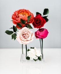 View the 36 hole acrylic floral display and petal holder  online at Cake Stuff
